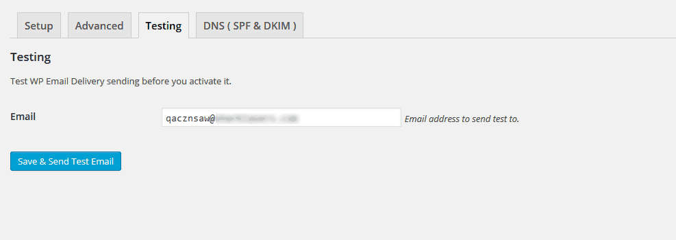 Test the WP Email Delivery's functionality