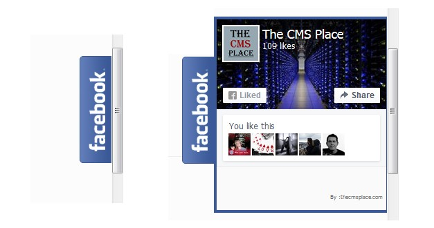 How to add a floating Facebook Page Plugin in WordPress