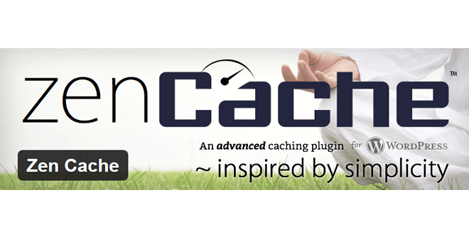 ZenCache – review
