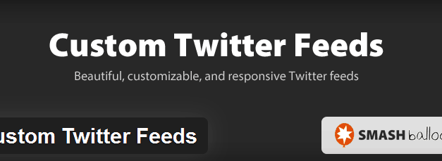 Custom Twitter Feeds – review