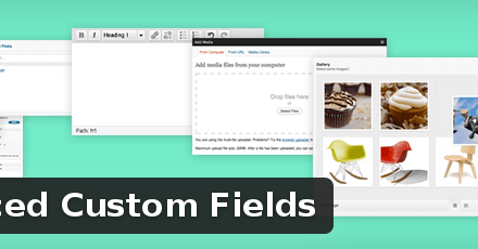 Advanced Custom Fields [Review]